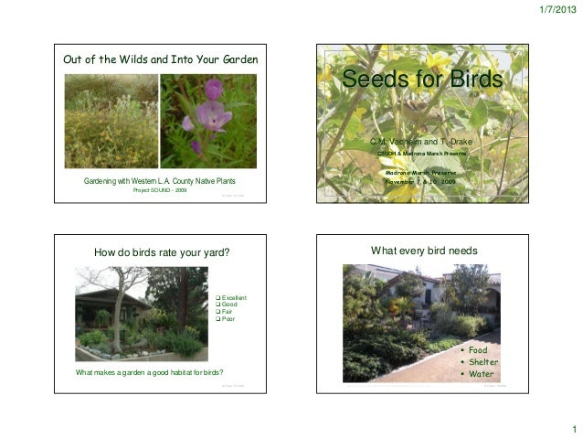 1/7/2013Out of the Wilds and Into Your Garden                                                                 Seeds for Bi...
