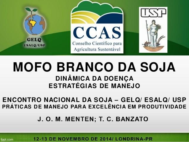 MOFO BRANCO DA SOJA  DINÂMICA DA DOENÇA  ESTRATÉGIAS DE MANEJO  ENCONTRO NACIONAL DA SOJA – GELQ/ ESALQ/ USP  PRÁTICAS DE ...