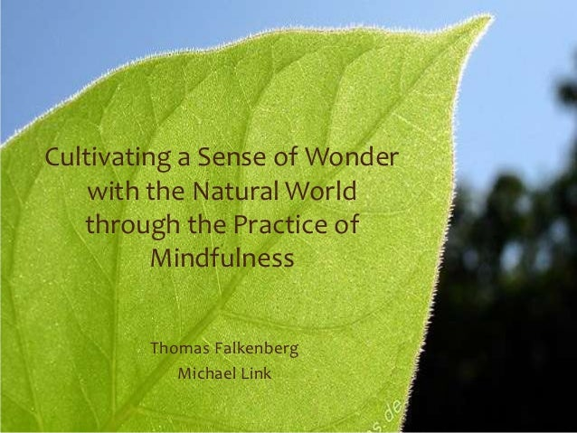 Cultivating a Sense of Wonder    with the Natural World   through the Practice of          Mindfulness        Thomas Falke...