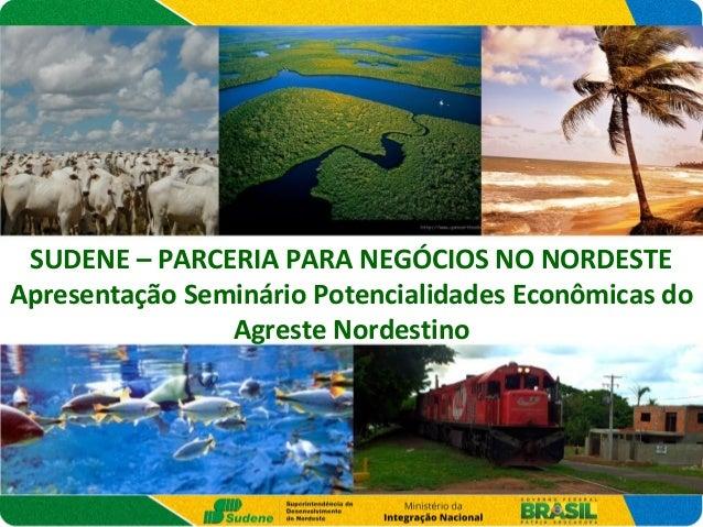 SUDENE – PARCERIA PARA NEGÓCIOS NO NORDESTE Apresentação Seminário Potencialidades Econômicas do Agreste Nordestino