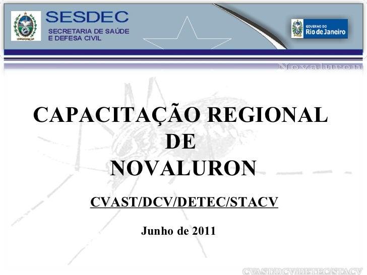 CAPACITAÇÃO REGIONAL  DE  NOVALURON CVAST/DCV/DETEC/STACV Junho de 2011