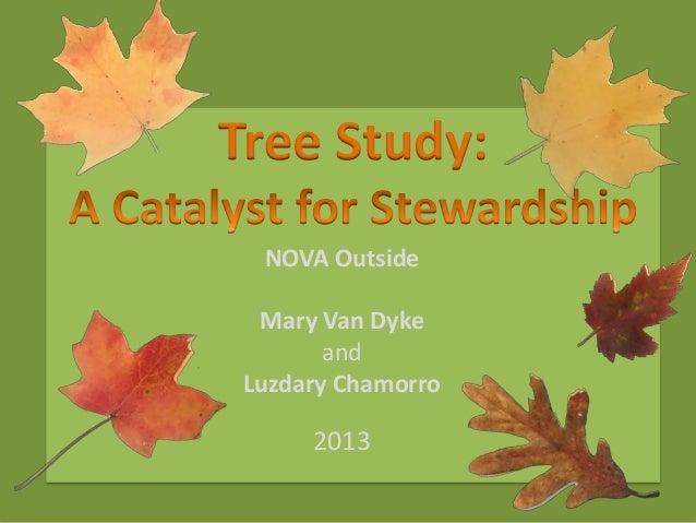 Tree Study: NOVA Outside Mary Van Dyke and Luzdary Chamorro  2013