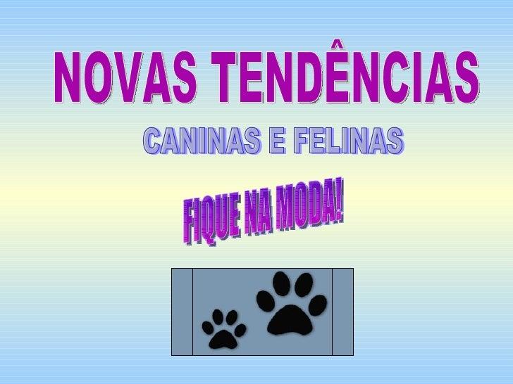 NOVAS TENDÊNCIAS CANINAS E FELINAS FIQUE NA MODA!