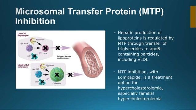 Novel approaches in Lipid Management