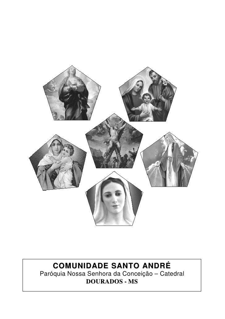 C O M U N I D AD E S AN T O AN D R ÉParóquia Nossa Senhora da Conceição – Catedral              DOURADOS - MS