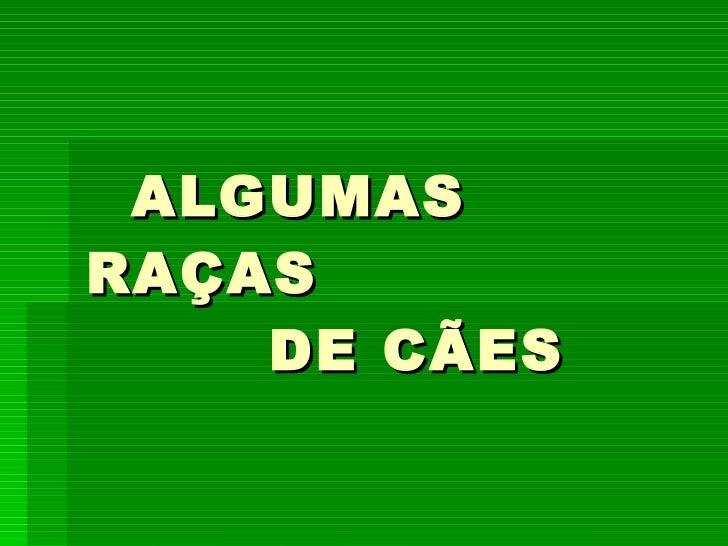 ALGUMAS RAÇAS   DE CÃES