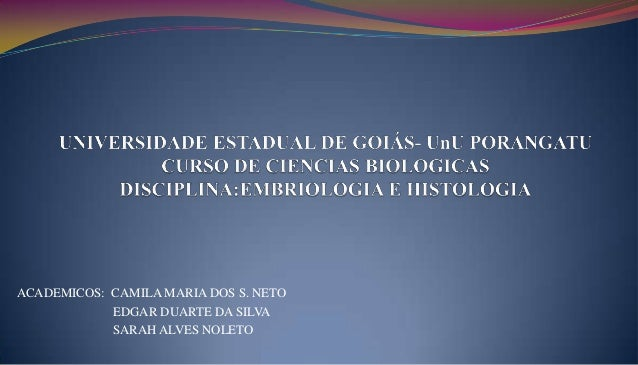 ACADEMICOS: CAMILA MARIA DOS S. NETOEDGAR DUARTE DA SILVASARAH ALVES NOLETO