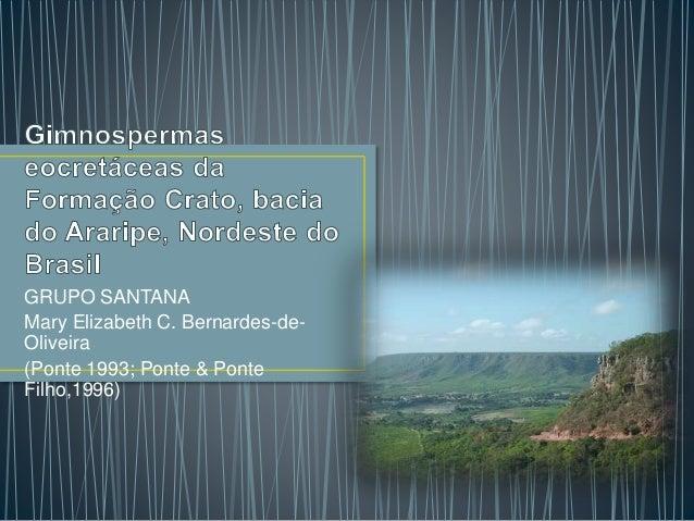 GRUPO SANTANA  Mary Elizabeth C. Bernardes-de-  Oliveira  (Ponte 1993; Ponte & Ponte  Filho,1996)