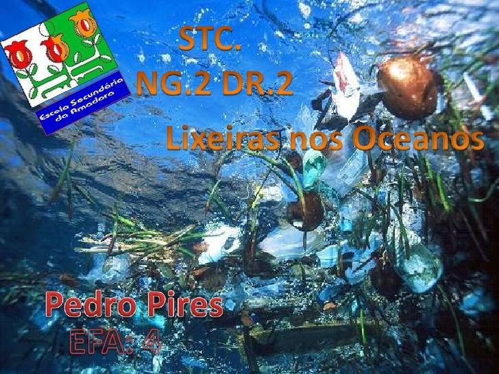 STC. <br />NG.2 DR.2<br />Lixeiras nos Oceanos<br />Pedro Pires<br />EFA: 4<br />