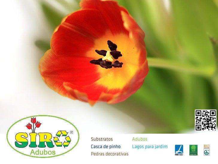 Líquidos    Universal               Palmeiras      Plantas Ácidas                 Plantas de Interior     Orquídeas      C...