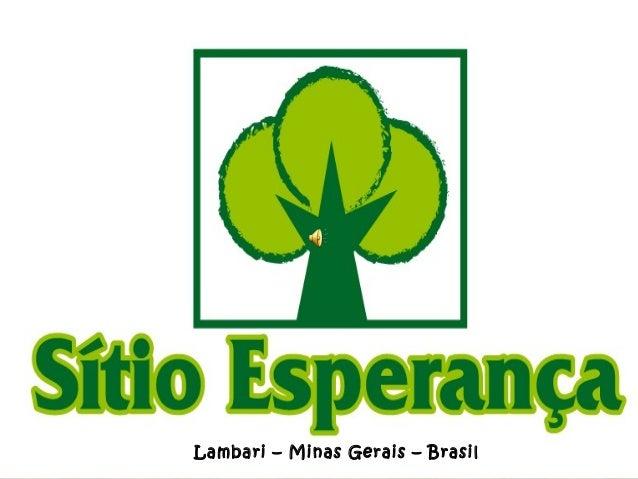 Lambari – Minas Gerais – Brasil