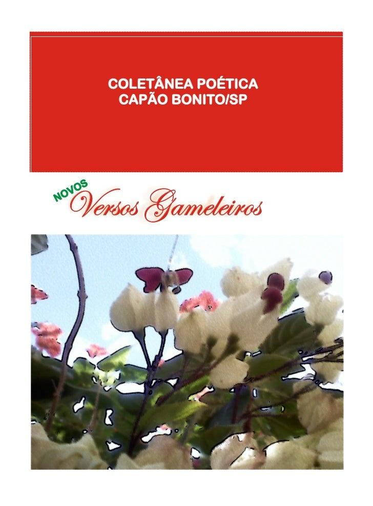COLETÂNEA POÉTICA          CAPÃO BONITO/SP    OSN Versos Gameleiros  OV