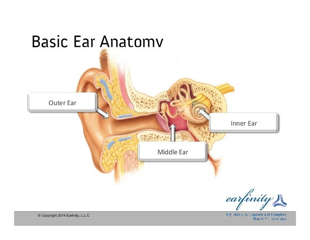 Earfinity Hearing Aid Presentation