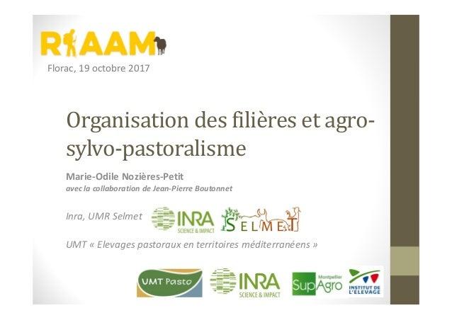 Organisation des filières et agro- sylvo-pastoralisme Marie-Odile Nozières-Petit avec la collaboration de Jean-Pierre Bout...
