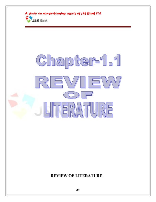 literature review of bank efficiency Individual bank efficiency scores are estimated over the period 2006 to 2012, a  period that allows analysis of the  literature review significant changes in the.