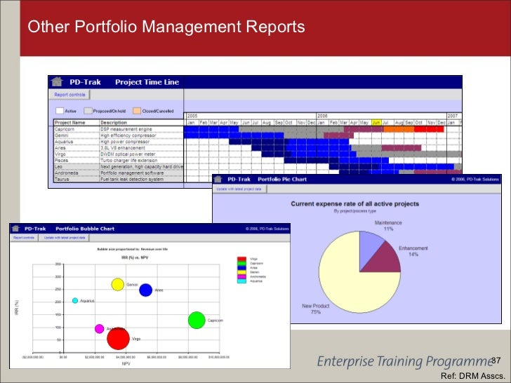 portfolio management report
