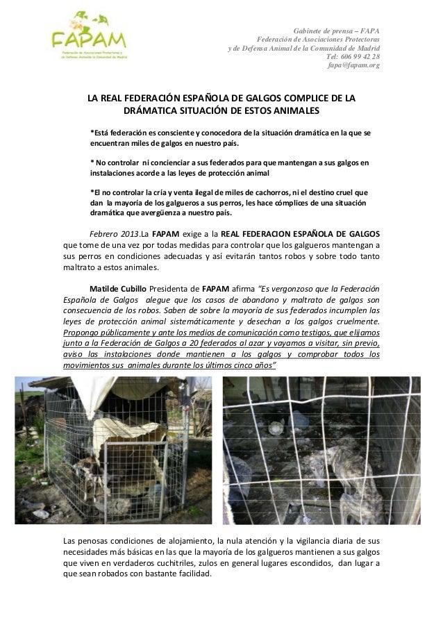 Gabinete de prensa – FAPA                                                            Federación de Asociaciones Protectora...