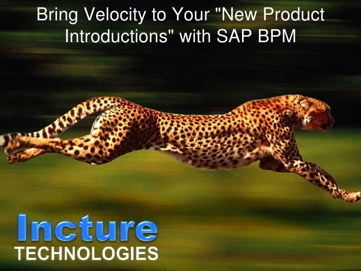 "Bring Velocity to Your ""New Product Introductions"" with SAP BPM"