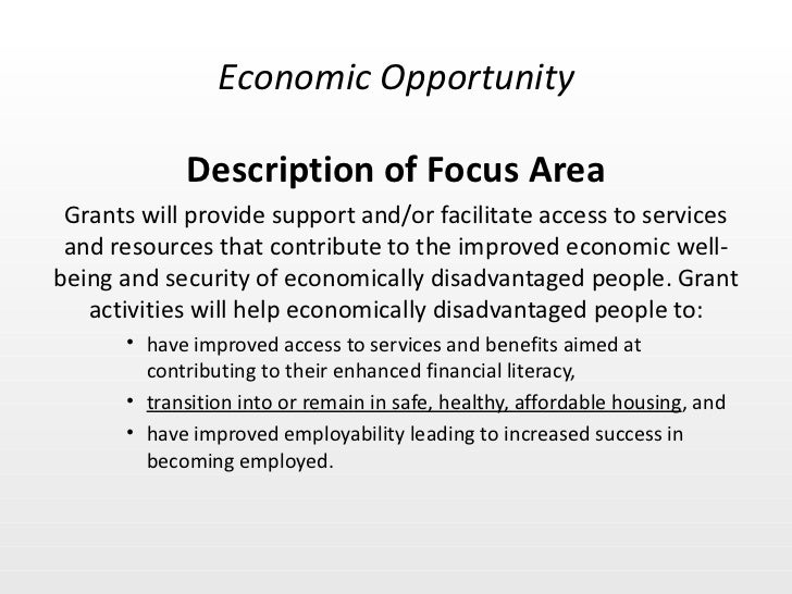 <ul><li>Description of Focus Area </li></ul><ul><li>Grants will provide support and/or facilitate access to services and r...