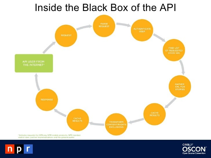 Inside the Black Box of the API