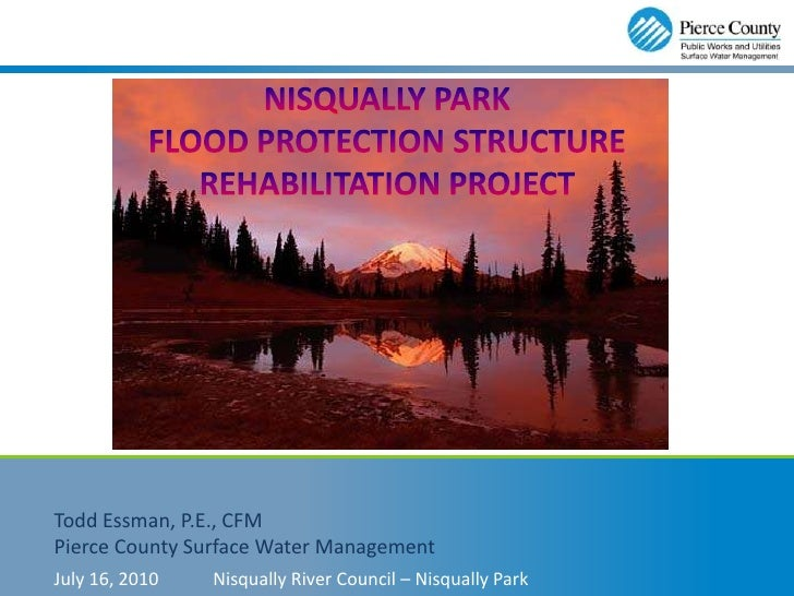 Upper Nisqually Levee Repair Project