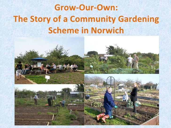 Grow-Our-Own: The Story of a Community Gardening Scheme in Norwich