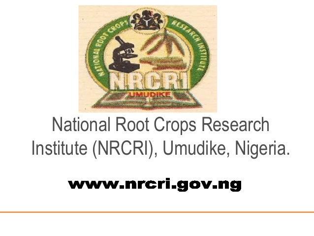 National Root Crops Research Institute (NRCRI), Umudike, Nigeria.
