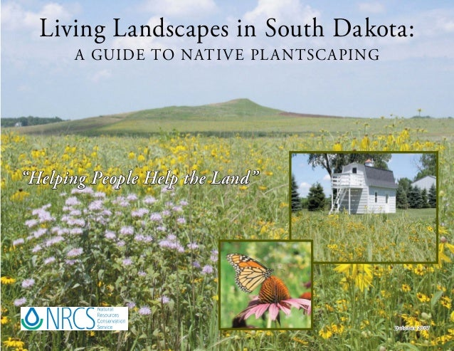 """Living Landscapes in South Dakota:      A GUIDE TO NATI V E PL A NTSC A PING""""Helping People Help the Land""""                ..."""