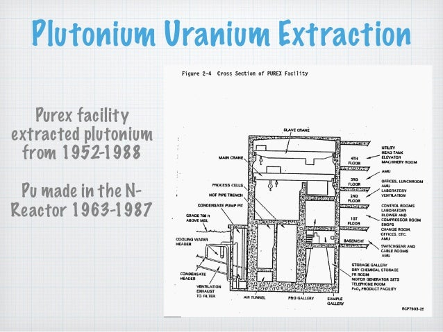 Plutonium Uranium Extraction Purex facility extracted plutonium from 1952-1988 Pu made in the N- Reactor 1963-1987