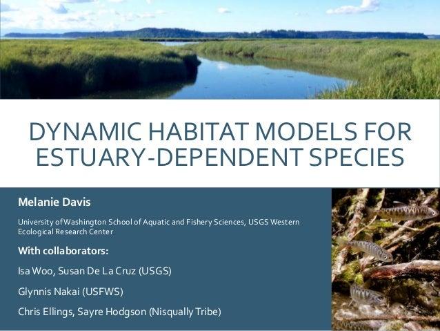 DYNAMIC HABITAT MODELS FOR ESTUARY-DEPENDENT SPECIES Melanie Davis University of Washington School of Aquatic and Fishery ...