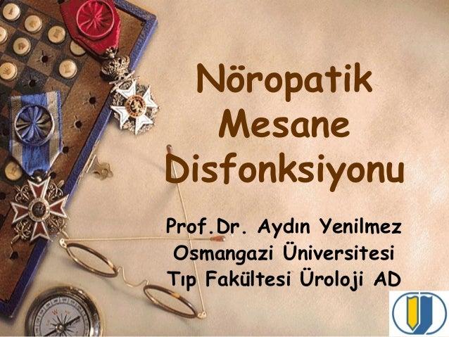 Nöropatik Mesane Disfonksiyonu Prof.Dr. Aydın Yenilmez Osmangazi Üniversitesi Tıp Fakültesi Üroloji AD