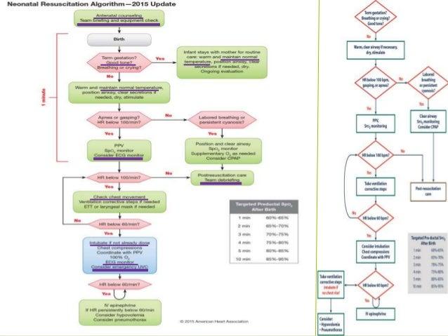 Textbook Of Neonatal Resuscitation 6th Edition Pdf