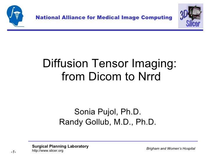 Diffusion Tensor Imaging:  from Dicom to Nrrd Sonia Pujol, Ph.D. Randy Gollub, M.D., Ph.D. National Alliance for Medical I...
