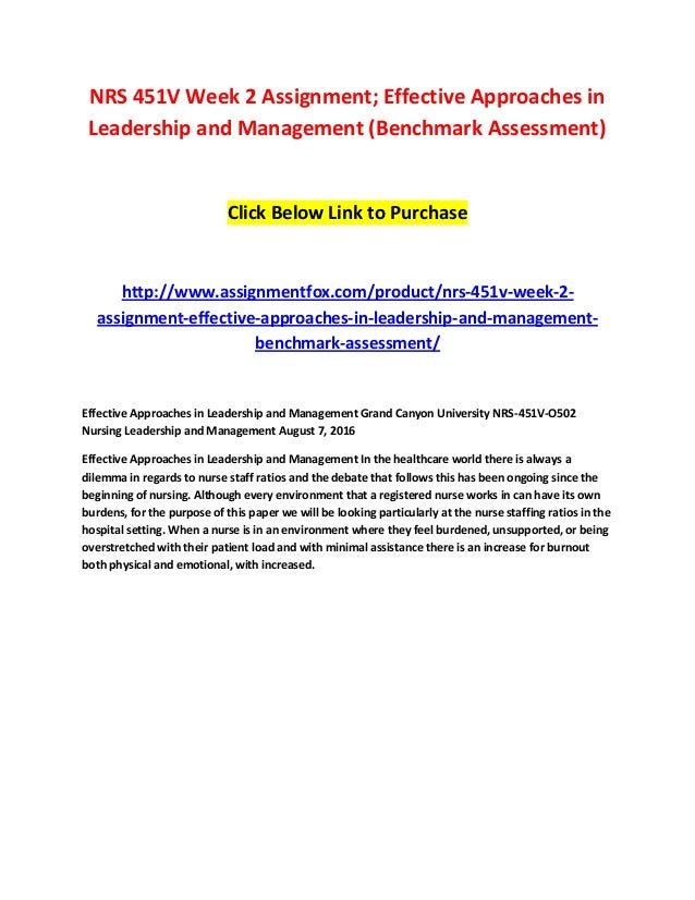 effective approaches in leadership and management nurse staffing ratios