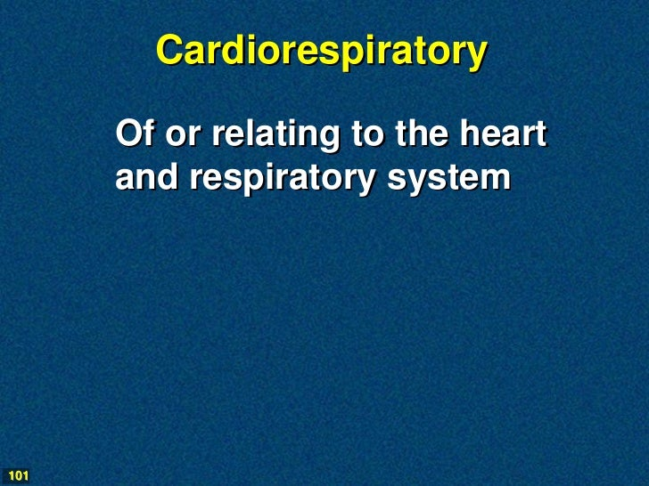 Cardiorespiratory      Of or relating to the heart      and respiratory system101