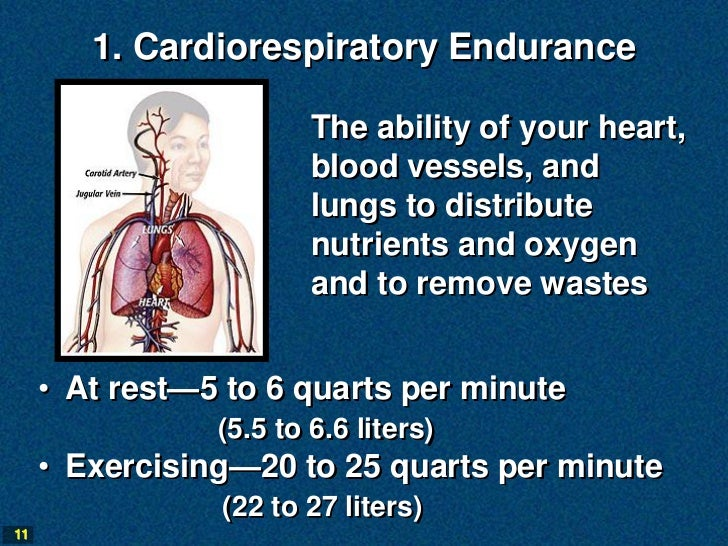 1. Cardiorespiratory Endurance                        The ability of your heart,                        blood vessels, and...