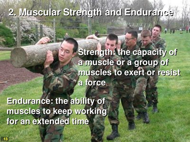 2. Muscular Strength and Endurance                   Strength: the capacity of                   a muscle or a group of   ...