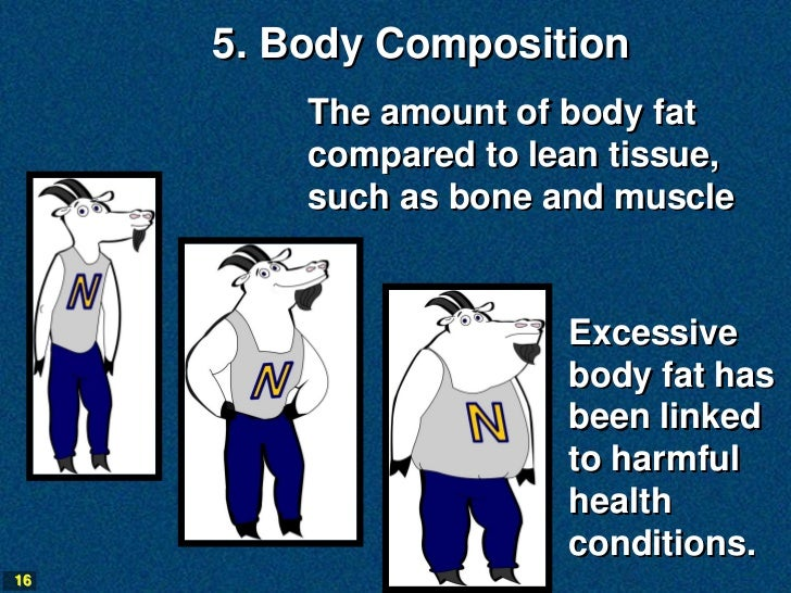 5. Body Composition         The amount of body fat         compared to lean tissue,         such as bone and muscle       ...