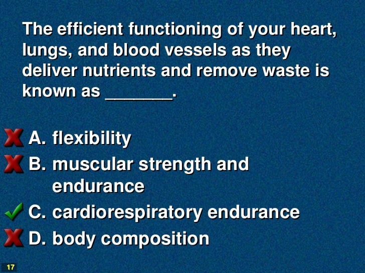 The efficient functioning of your heart,     lungs, and blood vessels as they     deliver nutrients and remove waste is   ...