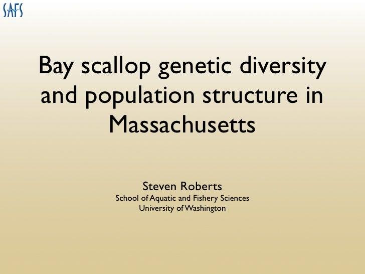 Bay scallop genetic diversity and population structure in        Massachusetts                Steven Roberts        School...