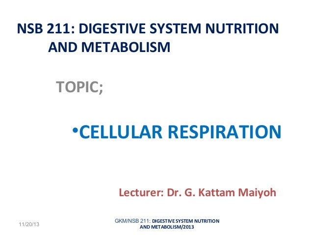 NSB 211: DIGESTIVE SYSTEM NUTRITION AND METABOLISM  TOPIC;  •CELLULAR RESPIRATION Lecturer: Dr. G. Kattam Maiyoh 11/20/13 ...