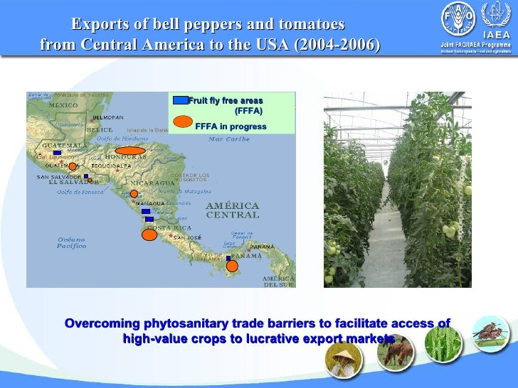 High Value Food Export Definition