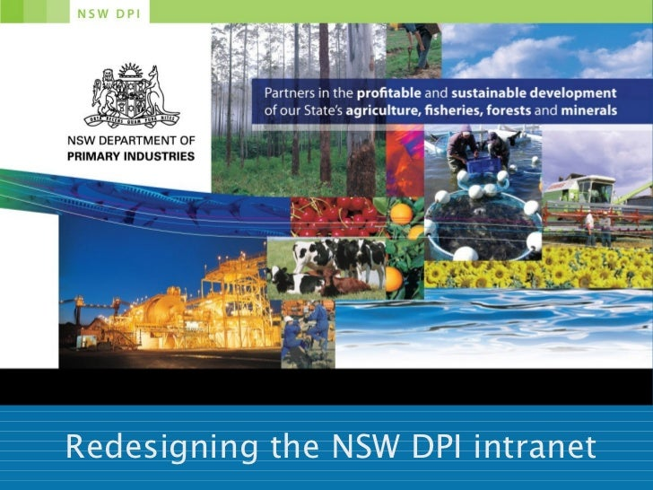 Redesigning the NSW DPI intranet