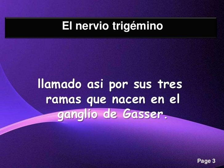Nervio Trigémino Slide 3