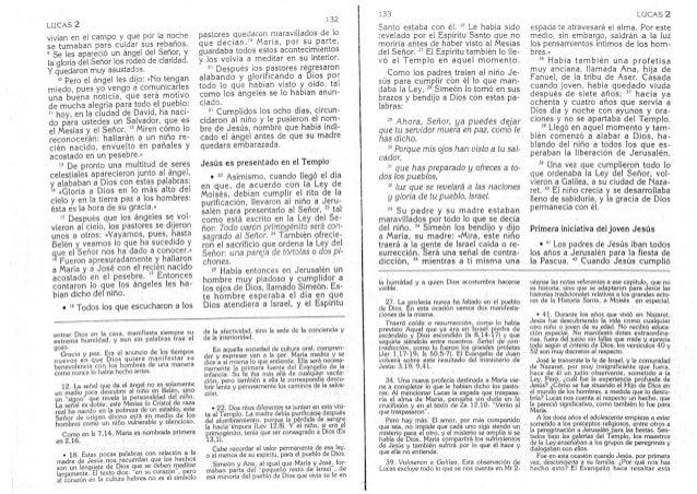 Biblia Catolica Nuevo Testamento Evangelio De Lucas Parte 4 De 27