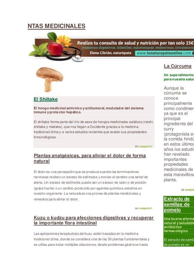NTAS MEDICINALES El Shiitake El hongo medicinal antivírico y antitumoral, modulador del sistema inmune y protector hepátic...