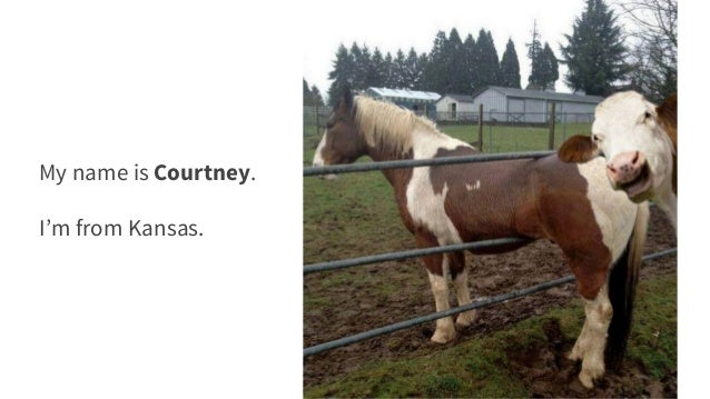 Longform Content: A Cautionary Tale - NTC 2016 Wordpress Day Slide 3