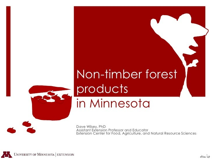Non-timber forest products in Minnesota<br />Dave Wilsey, PhD<br />Assistant Extension Professor and Educator<br />Extensi...