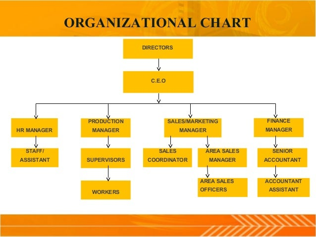 Organization Study At N Tize Chair Company