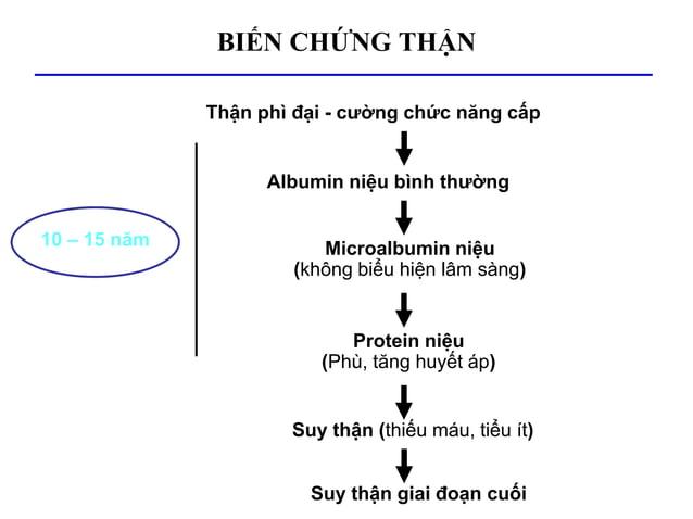 Microalbumin niệu (không biểu hiện lâm sàng) Thận phì đại - cường chức năng cấp Albumin niệu bình thường Protein niệu (Phù...